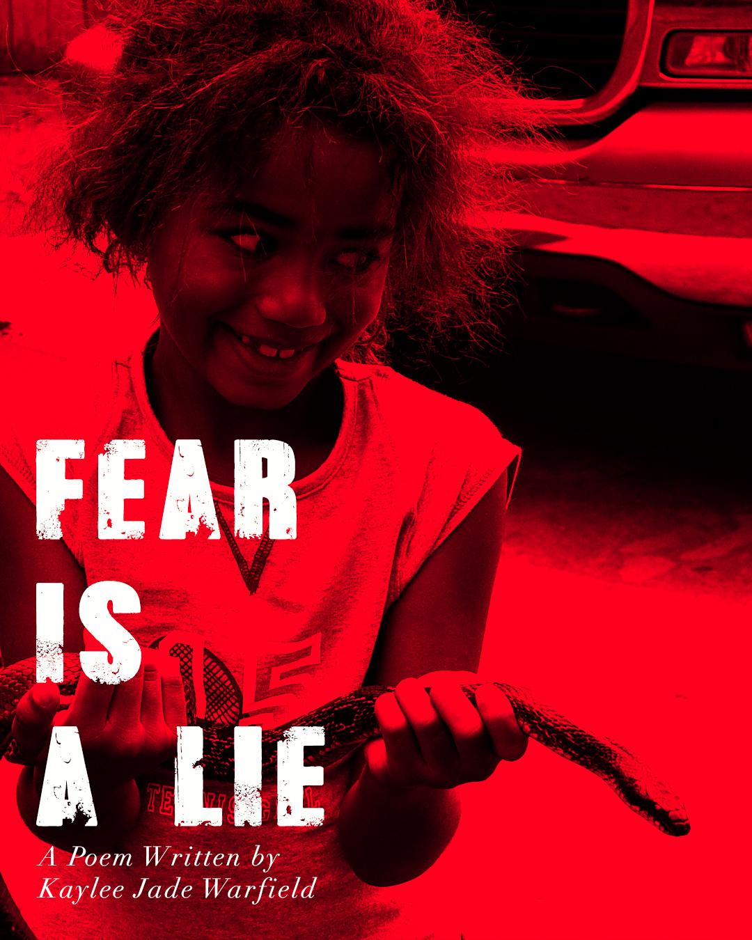 fear_is_a_lie_post1.jpg