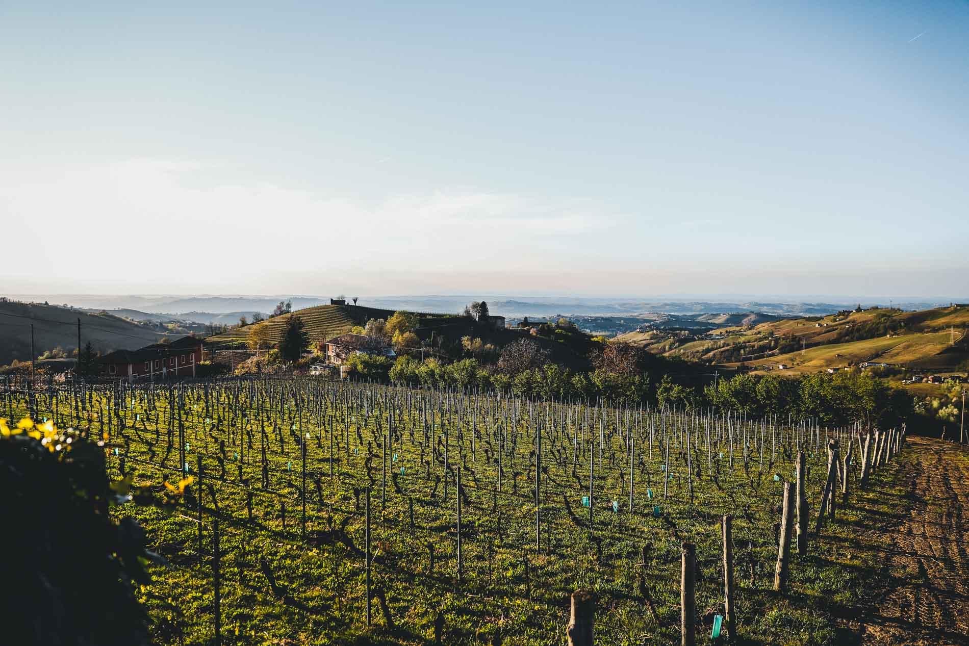 Die Region Langha im Piemont wird auch als das Land mit den 1000 Hügeln betitelt. Ein absoluter Traum, der selbst die Toskana in den Schatten stellt.