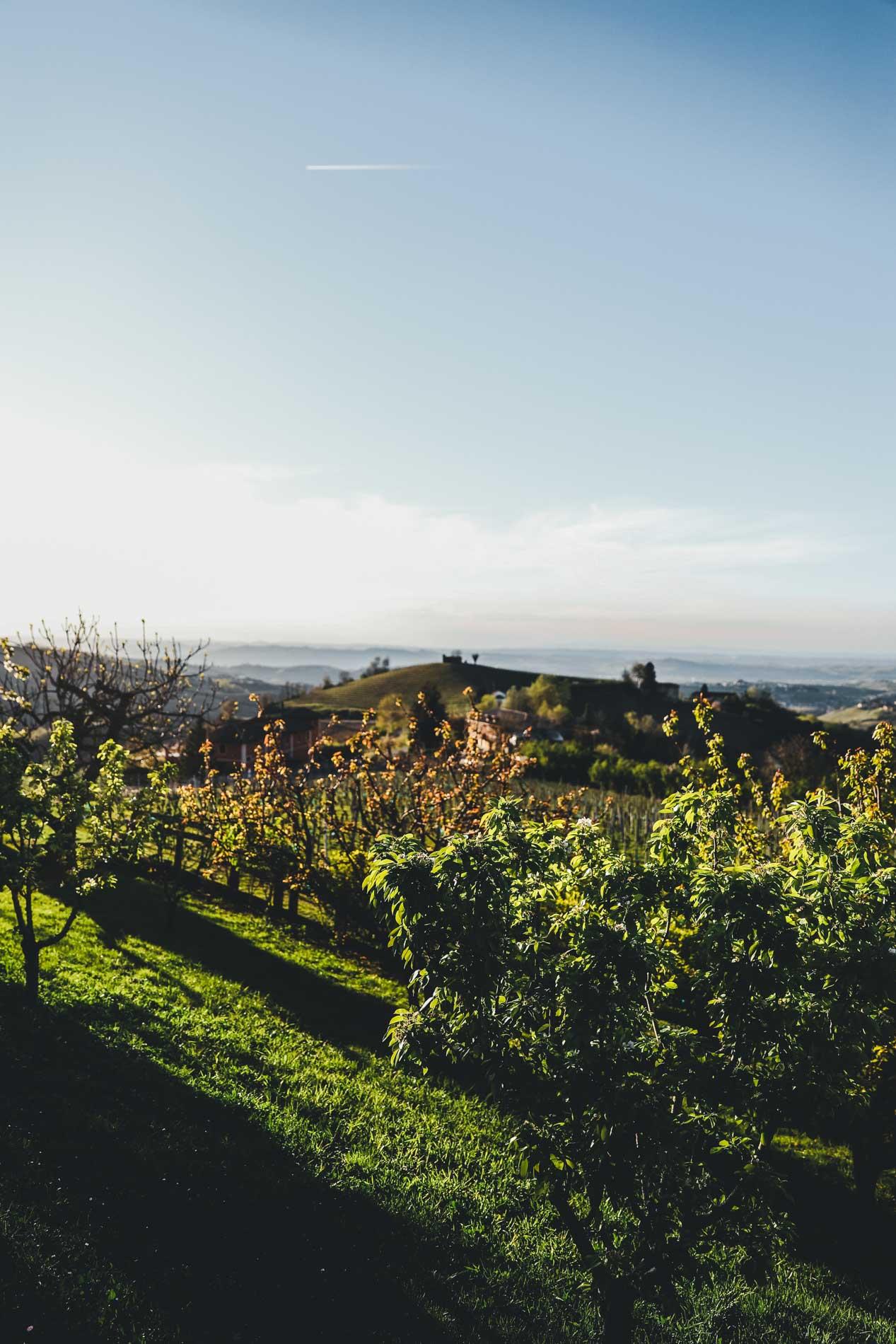 Die Landschaft im Piemont verzaubert einen sofort
