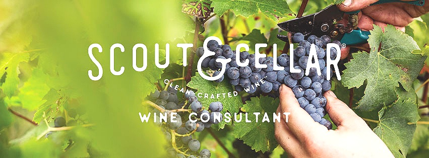 Scout & Cellar Clean-Crafted Wine