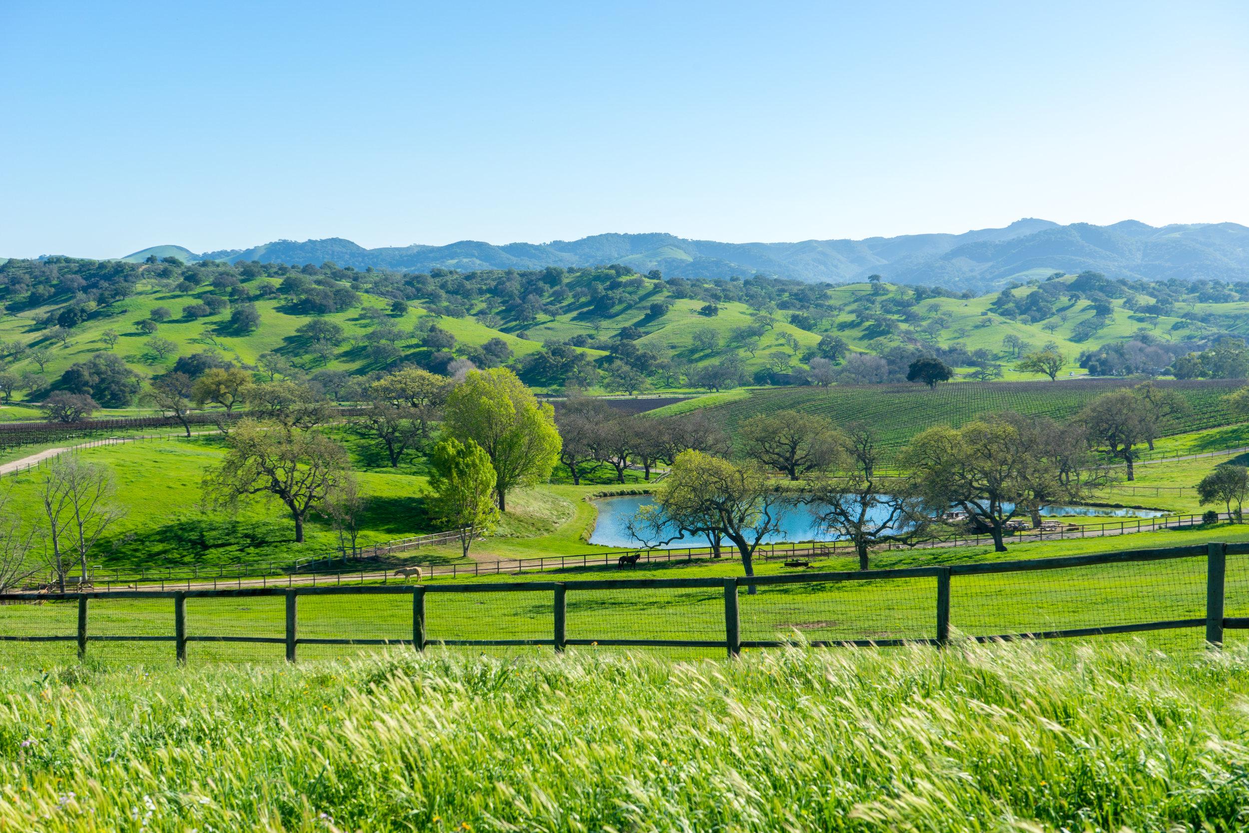Dovecote Green Hills.jpg