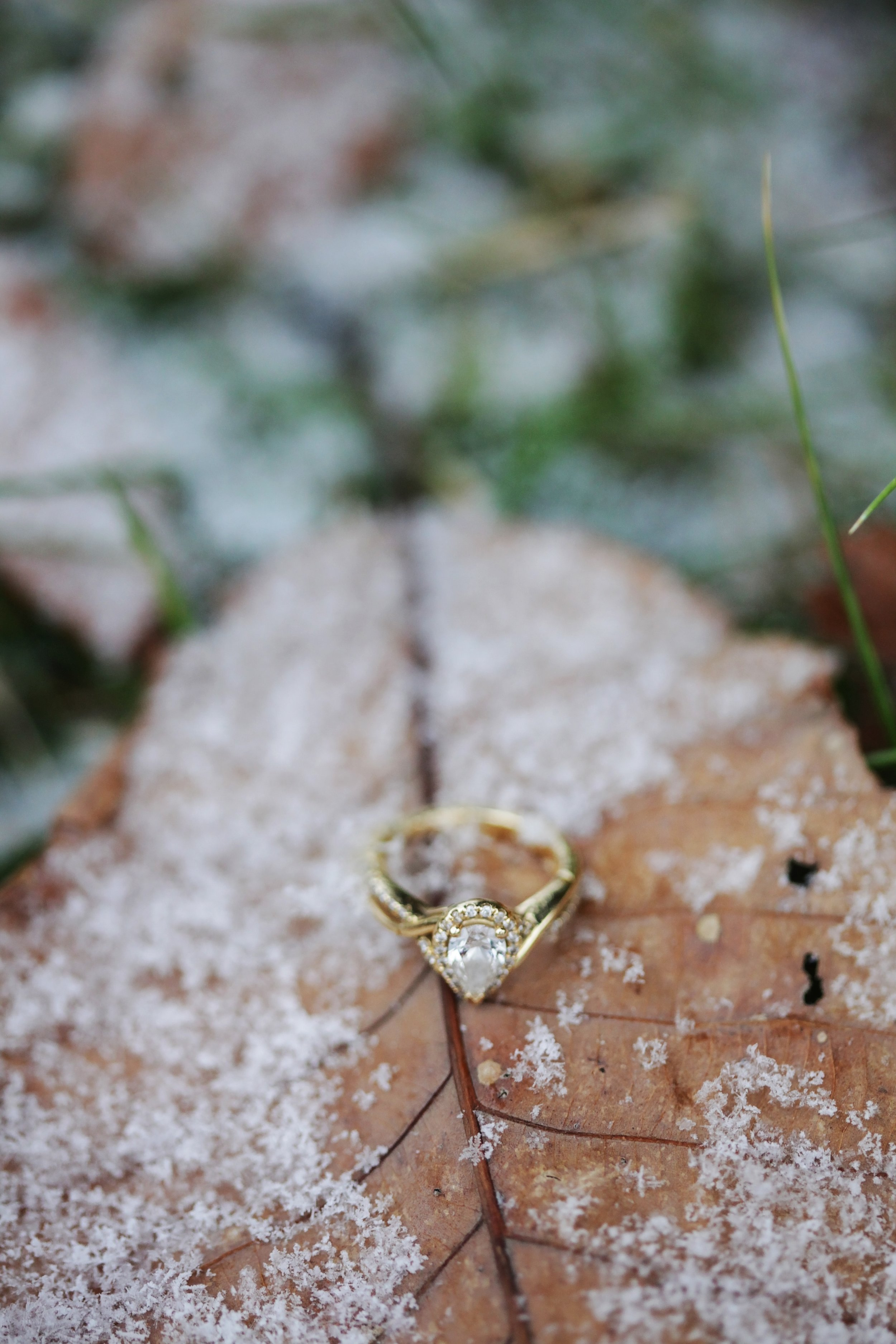 depth-of-field-engagement-ring-frost-776372.jpg