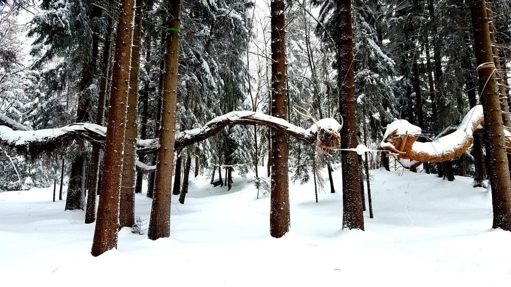 Dualgon hiver.jpg