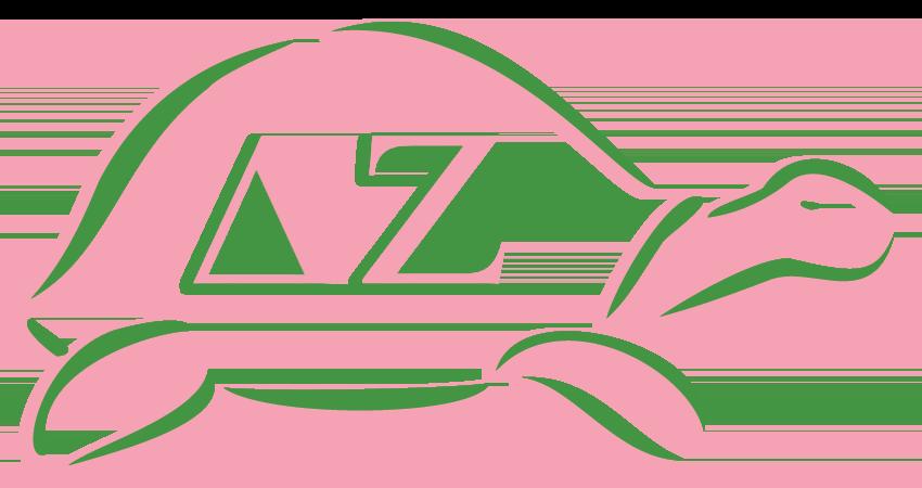 Delta-Zeta-Mascot-Turtle.png