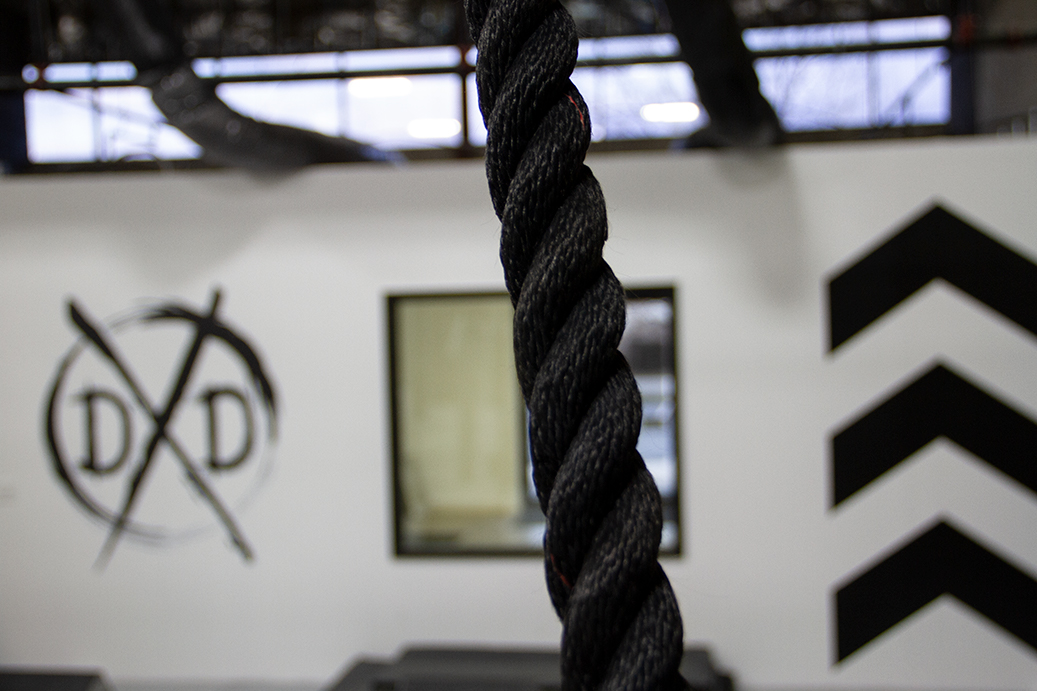 Dexterity Depot_Rope_Blurred Logo.jpg