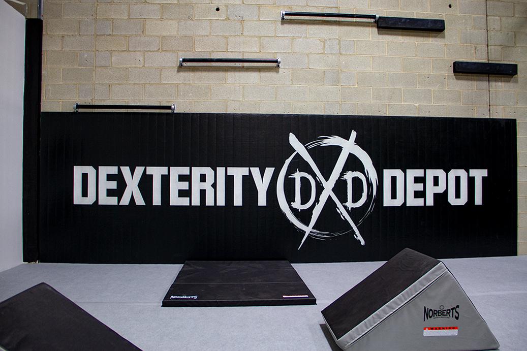 Dexterity Depot_Wall Logo Mat_Zoom.jpg