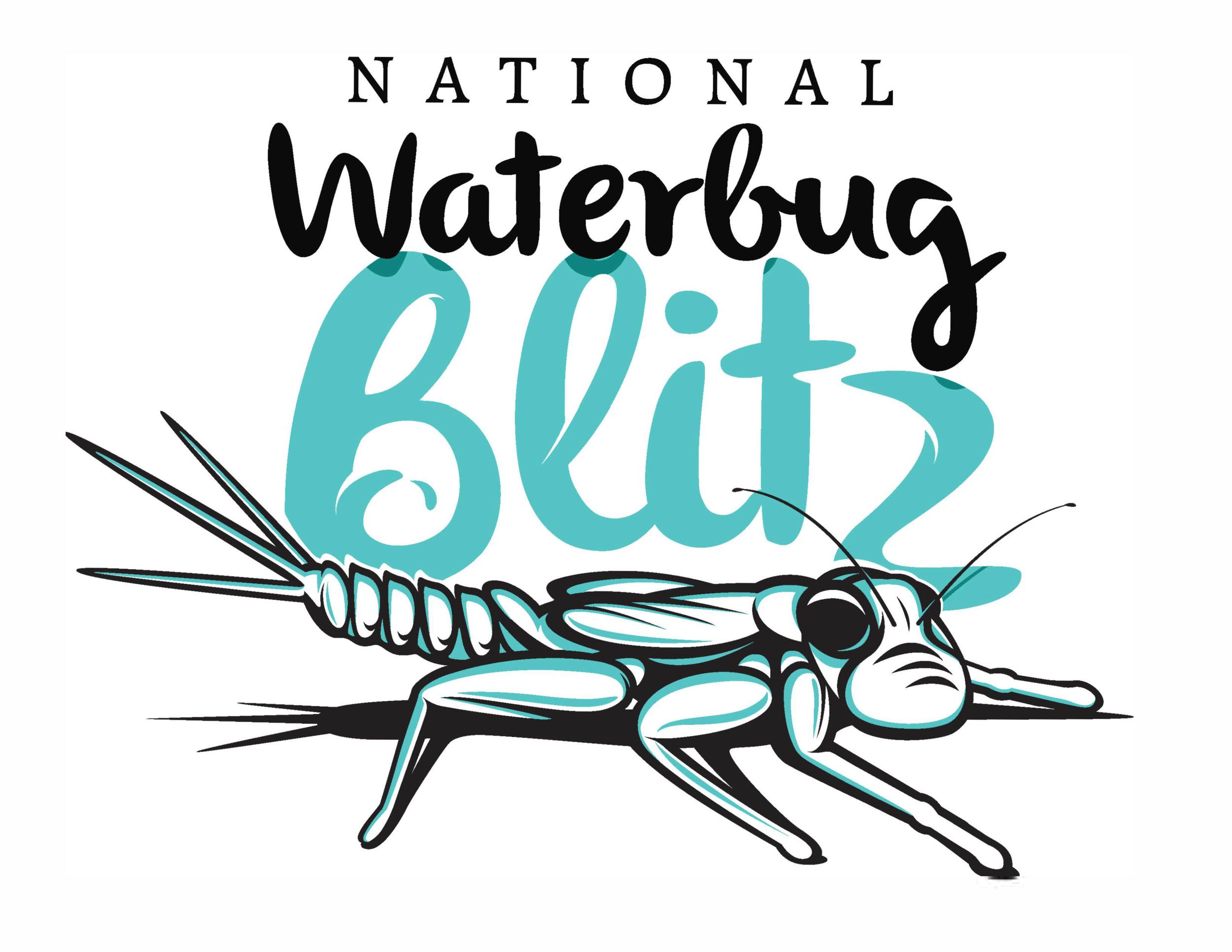 Waterbug Blitz logo