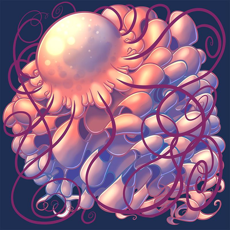 jellyfishSquare800x800.jpg