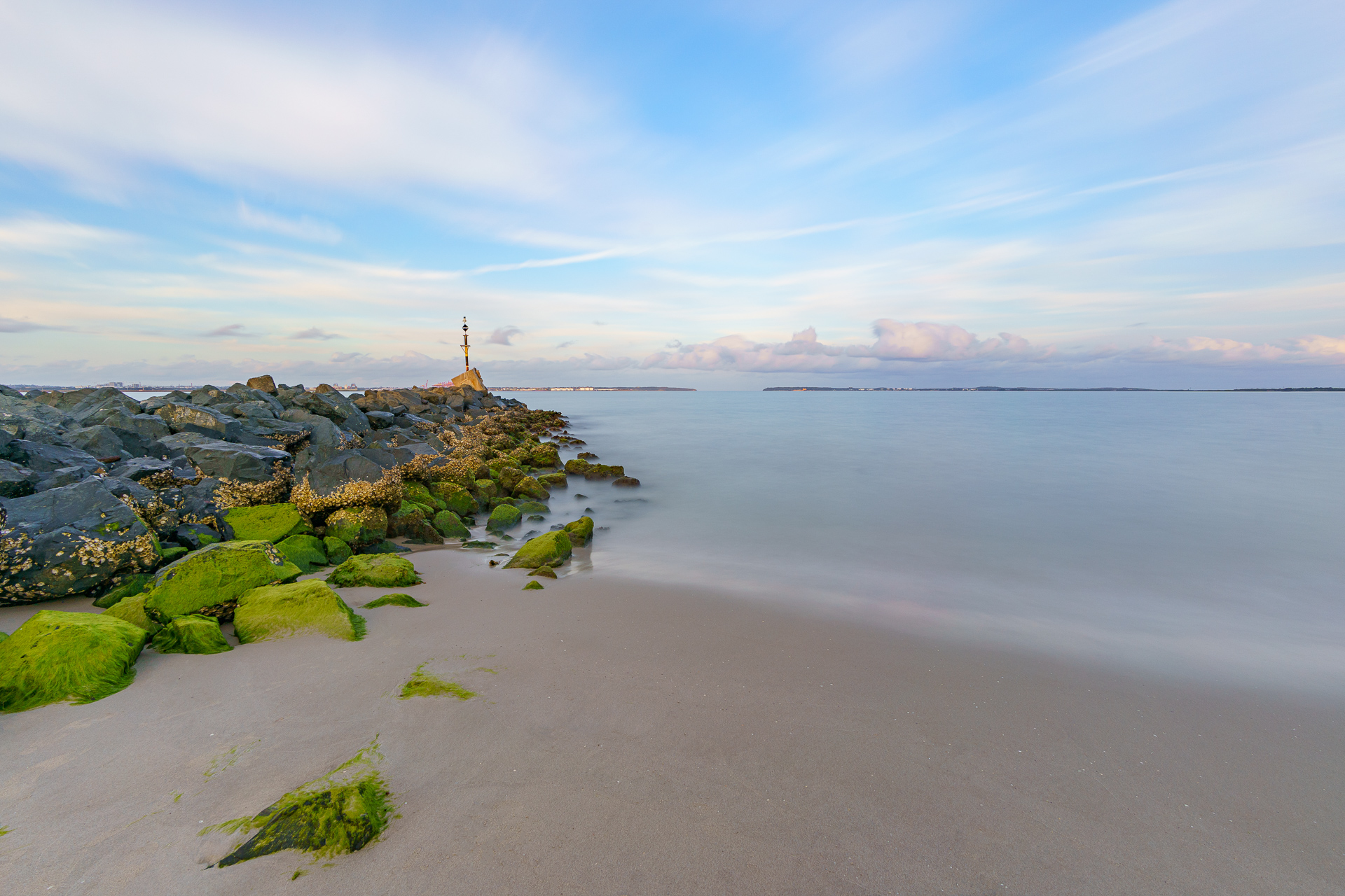 Low Tide in Botany Bay, 4 August 2019.