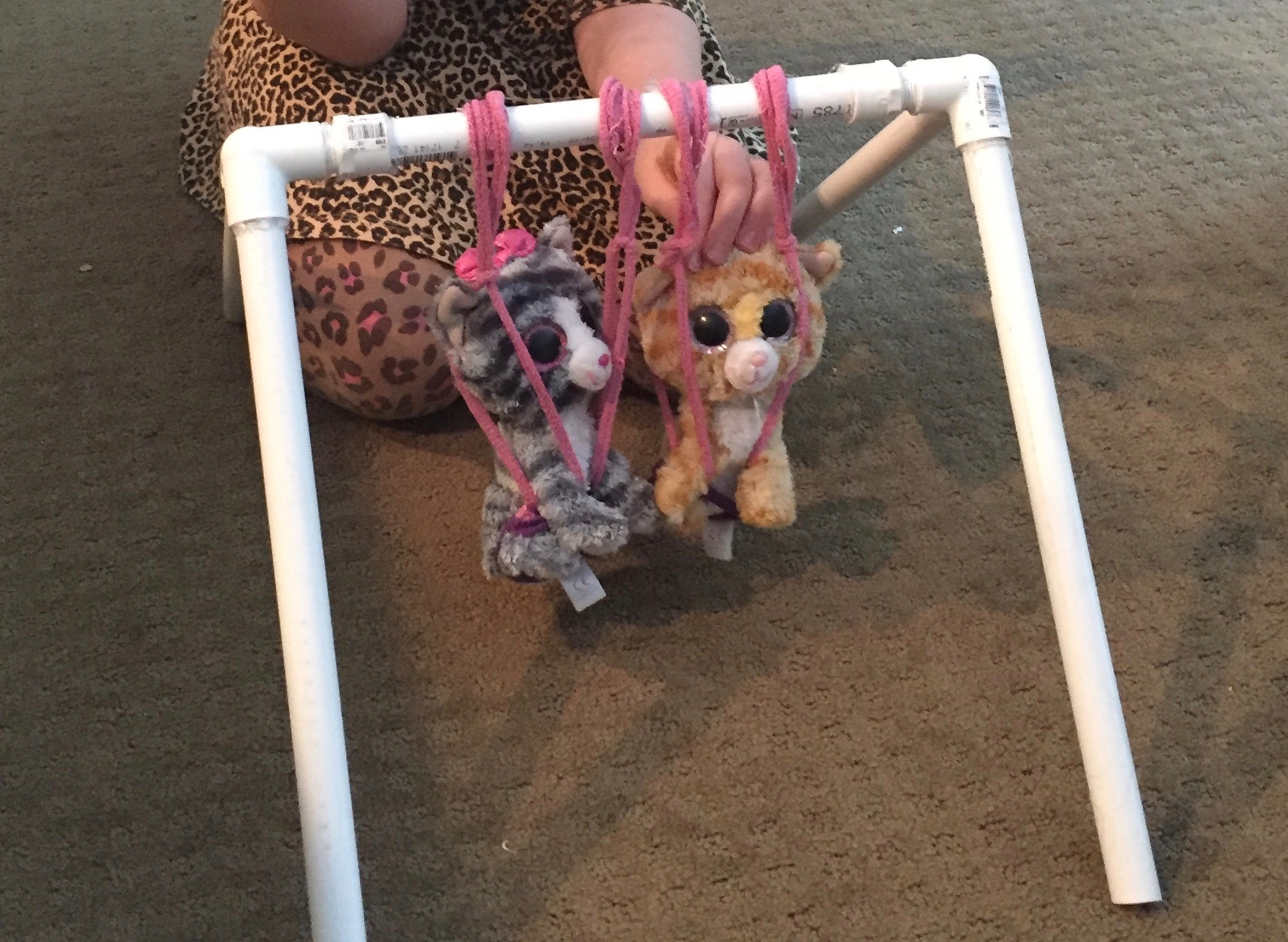 """""""What if I fall?Oh, but my darling,what if you fly?"""" - -Erin HansonPVC pipe pet swing created by my daughter."""
