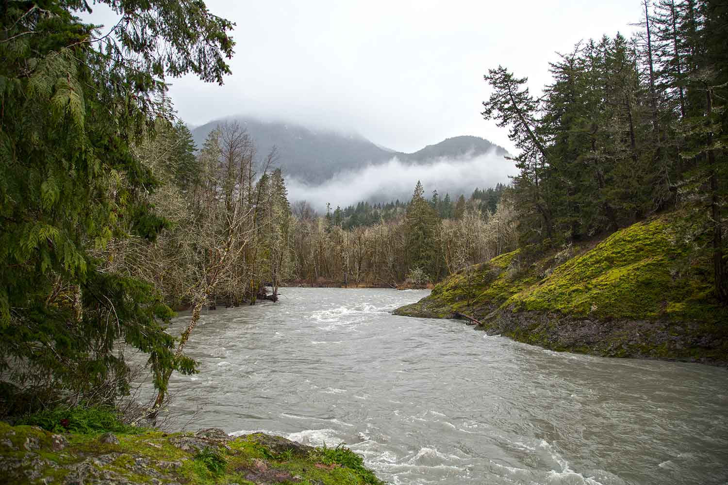 The Elwha River running free.