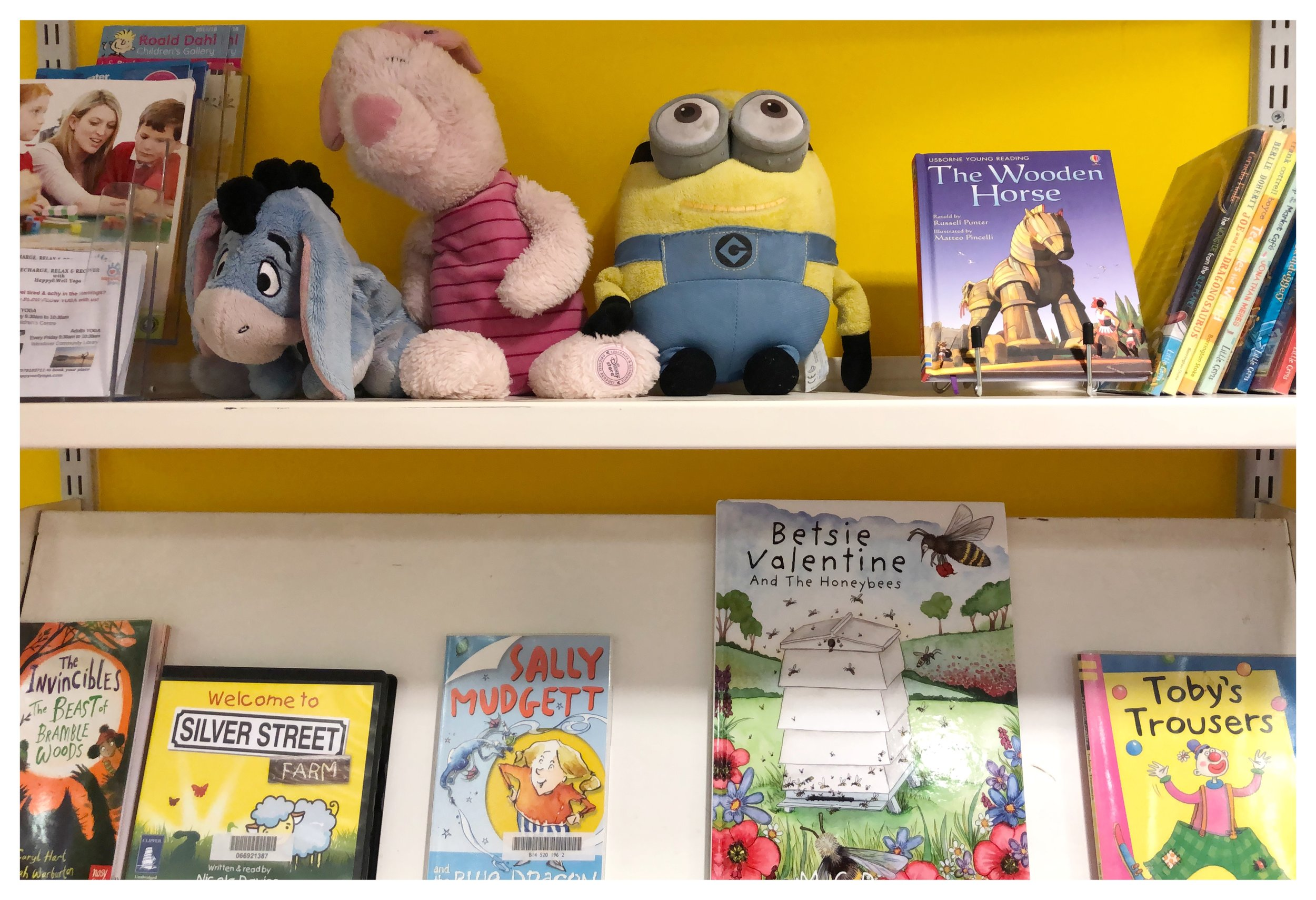 Love this picture of my book on the library shelves!