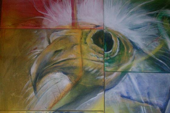 ID369604-Pharaohs-Chicken-Loxodonta-Jeffery-Smith.jpg
