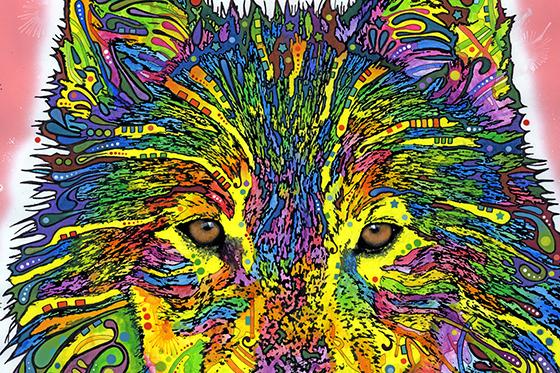 ID380026-Wolf-Dean-F-Russo.jpg