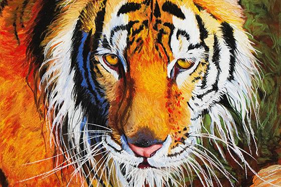 ID380345-Tiger-Tiger-Burning-Bright-Patsy-Lindamood.jpg