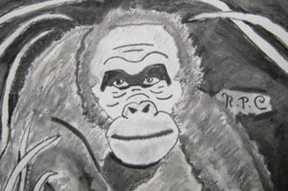 ID379905-Ape-Outside-Robert-P-Costo.jpg