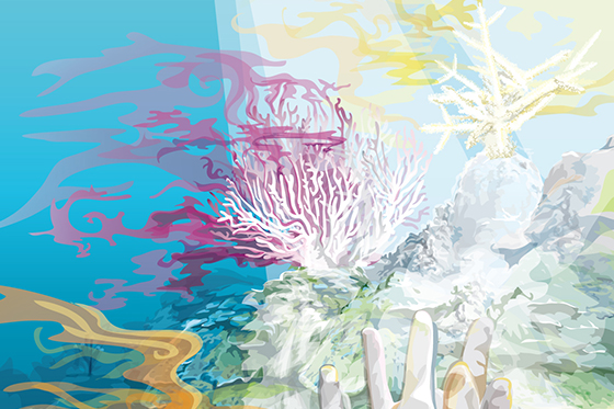 ID380080-Coral-White-Out-Katrina-C-Kelly.jpg