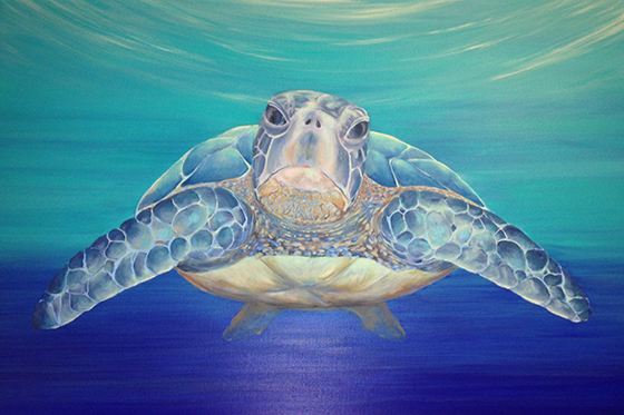 ID401439-Approaching-Sea-Turtle-Linda-Zust.jpg