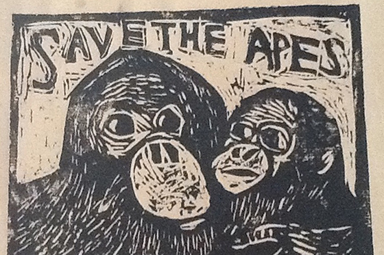 ID418983-Wood-You-Please-Save-the-Apes-Scout-Dingman.jpg