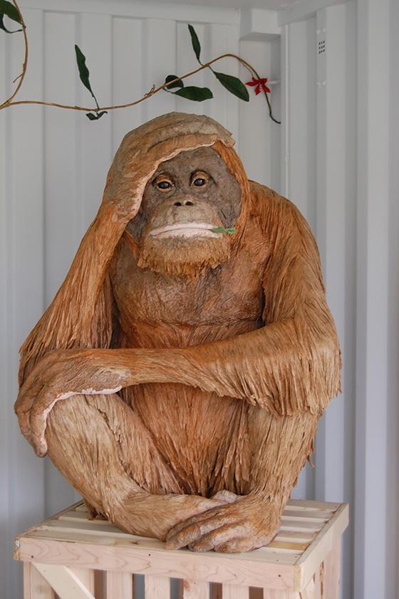 ID455677-Orangutan-Emma-Hardy.jpg