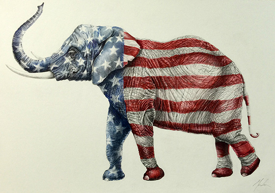 ID473849-Elephant-Brenda-Gordon.jpg