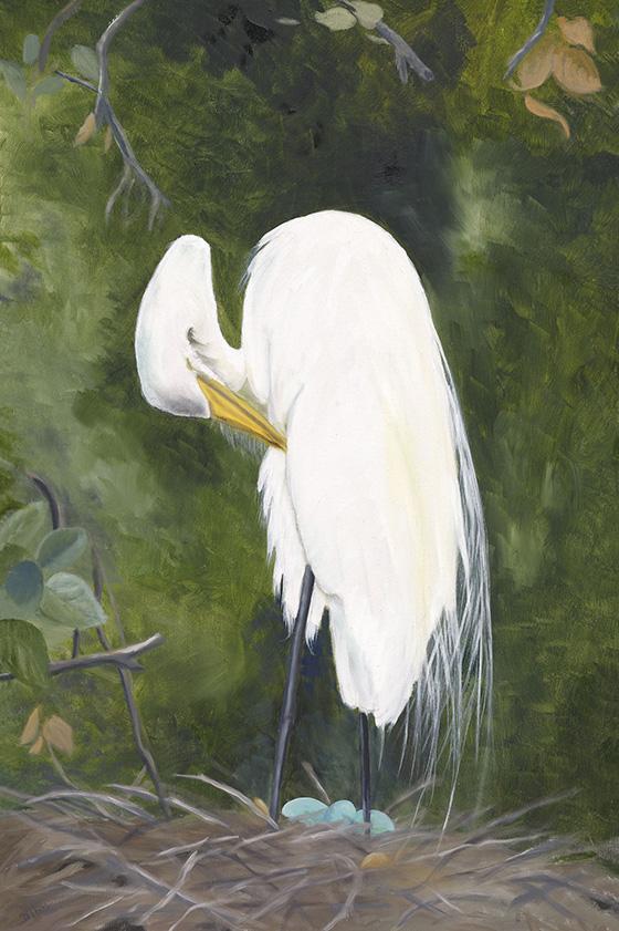 ID473887-Serenity-in-the-Everglades-Dorothea-E-Talik.jpg
