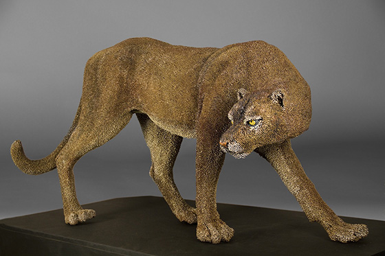ID473943-Florida-Panther-Mary-C-Taylor.jpg