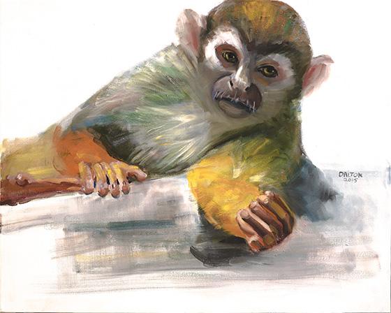 ID474765-Squirrel-Monkey-Ann-Dalton.jpg