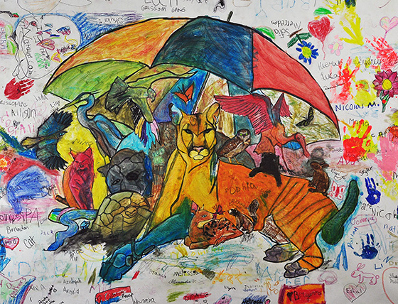 ID474826-Florida-Panther-Umbrella-Species-Kimberley-A-Heise.jpg