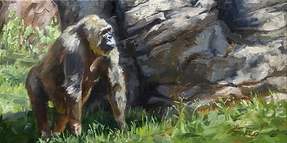 ID474882-Gorilla-Walking-Samantha-Fried.jpg