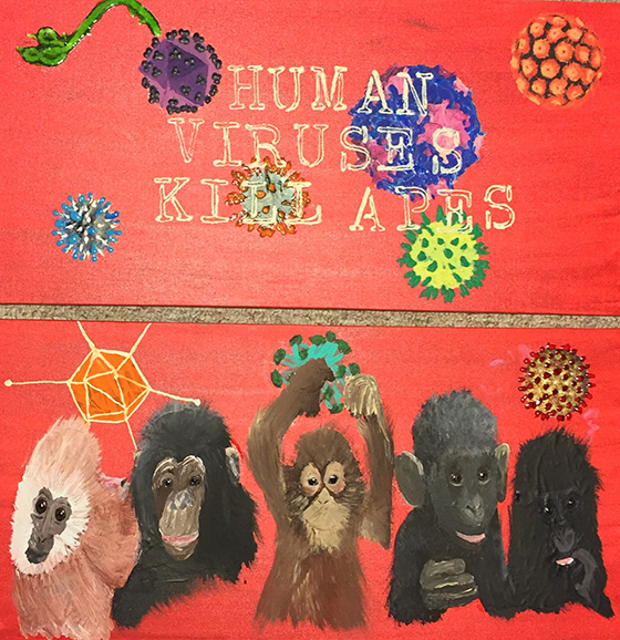 WEB_FA_ID475472-Human-Viruses-Kill-Apes-Ashley-E-Grace.jpg