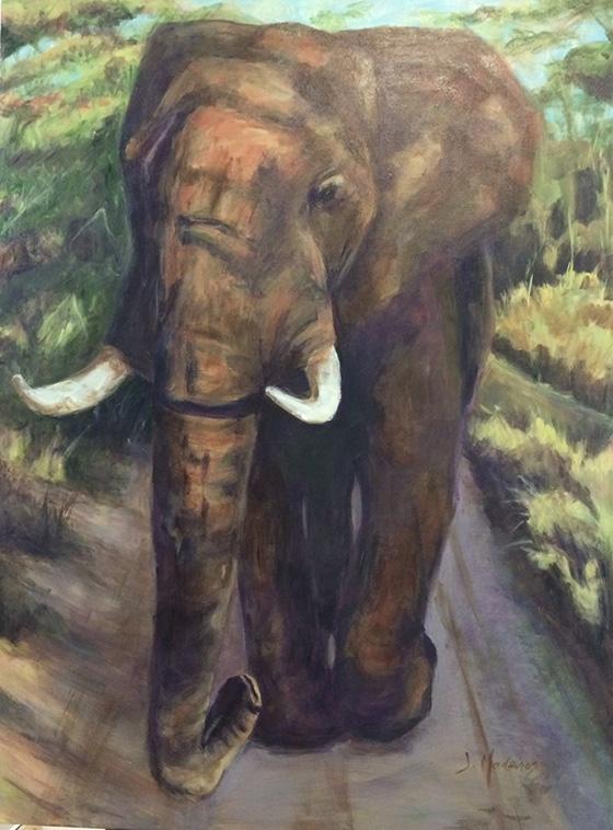 WEB_FA_ID509023-Irving-the-Elephant-Jacqueline-Medeiros.jpg