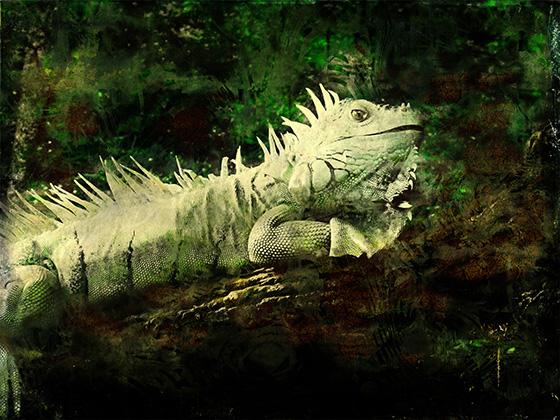 WEB_P_ID506988-Prehistoric-Echoes-Beth-Rosengard.jpg