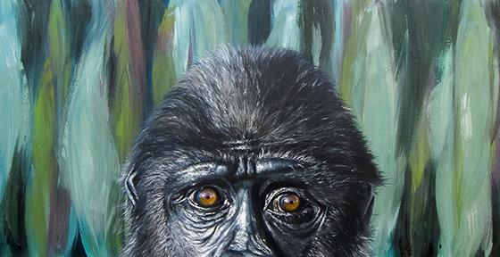 WEB_FA_ID520413-Chimpanzee-Sarah-Smith.jpg