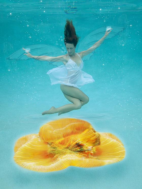 WEB_P_ID520622-Brain-Coral-Suzanne-Barton.jpg