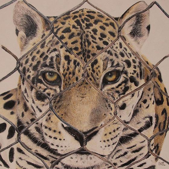 WEB_FA_ID520894-Caged-to-Save-Erika-Neff.jpg
