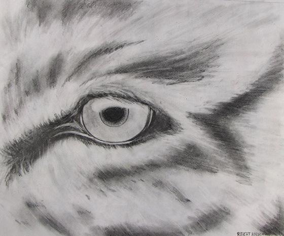 WEB_YA_ID520878-Eye-of-the-Tiger-Robert-Kirschke.jpg