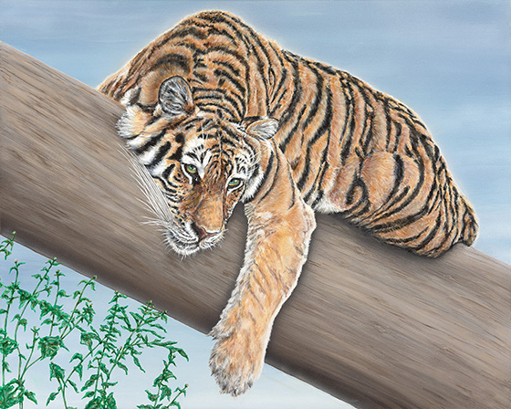 Tiger in a Tree © 2018 Dr. Ann Lindahl | All Rights Reserved