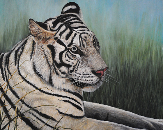 Majestic Tiger © 2018 Carol-Ann Salley | All Rights Reserved