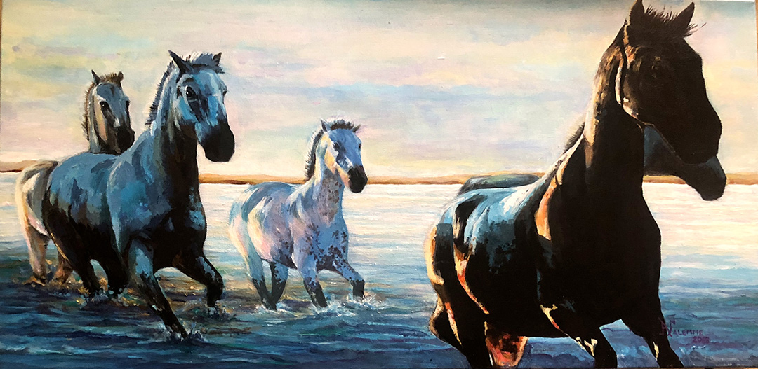 Wild Horses © 2018 Anthony Salemme | All Rights Reserved