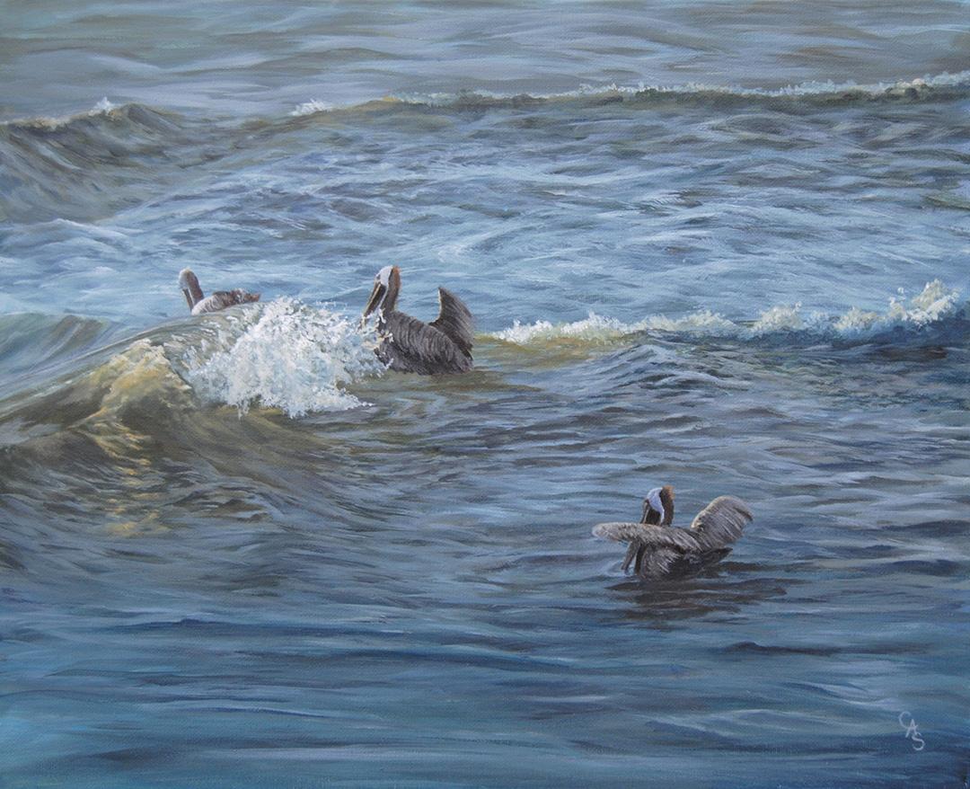 Morning Swim © 2018 Carol-Ann Salley | All Rights Reserved