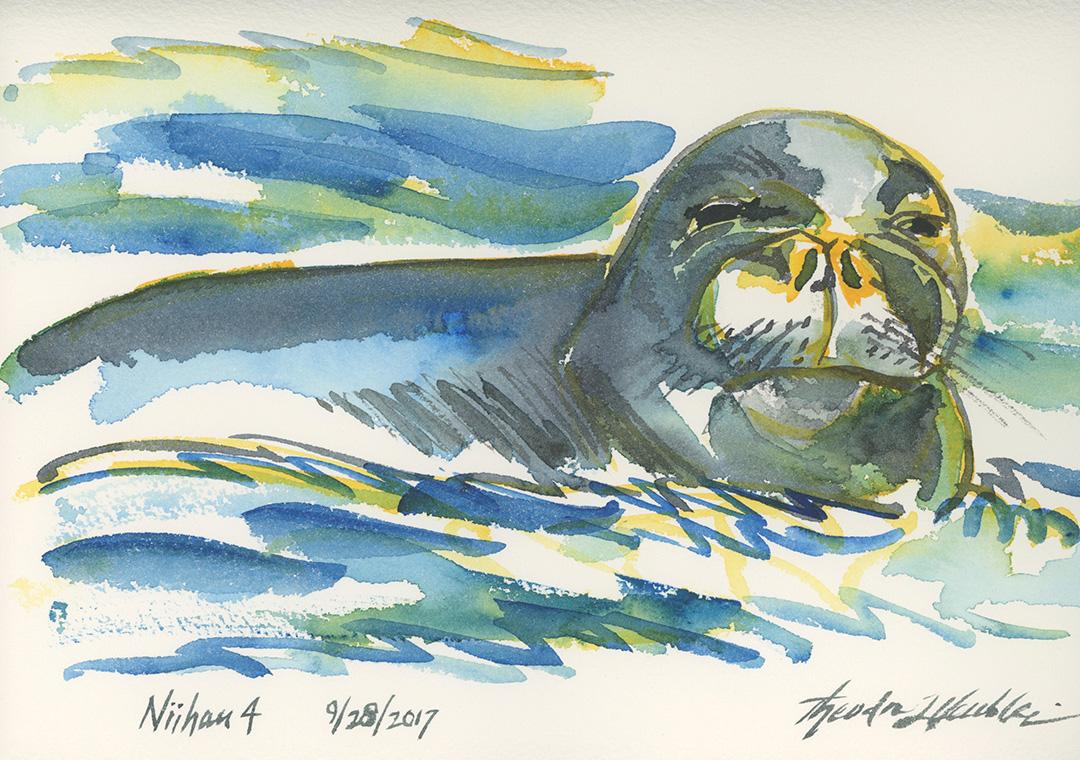 Niihau Monk Seal © 2019 Theodore Heublein | All Rights Reserved