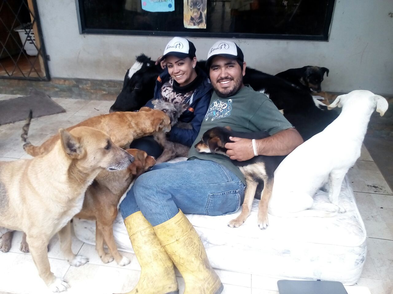 February 2018 - Two staff members from Accion Animal Ecuador cuddling this unusual combination of rescues after a long morning of work.