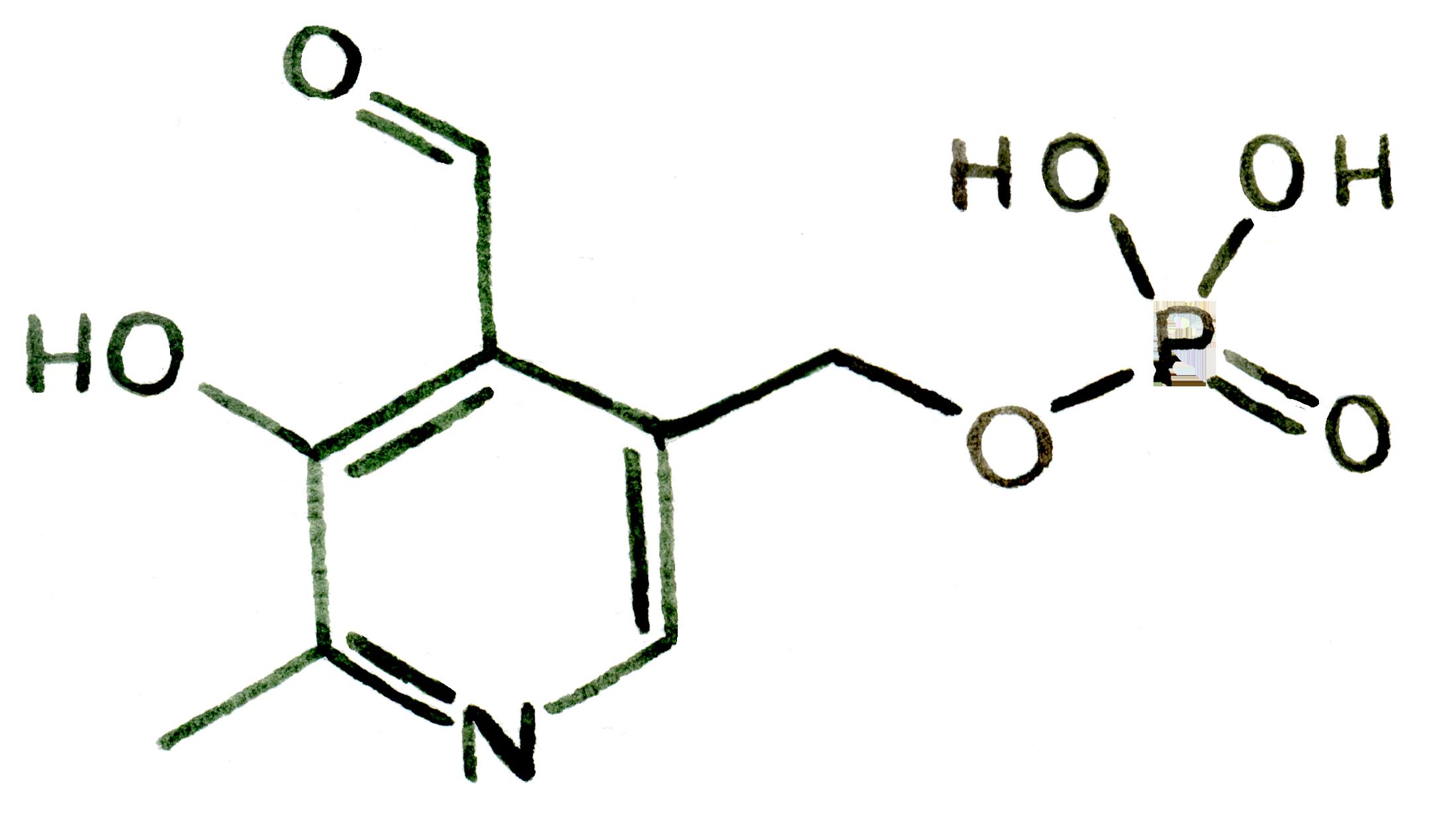 Vitamine B6 as Smart Drugs for Best Nootropics UK by Earthly Biotics