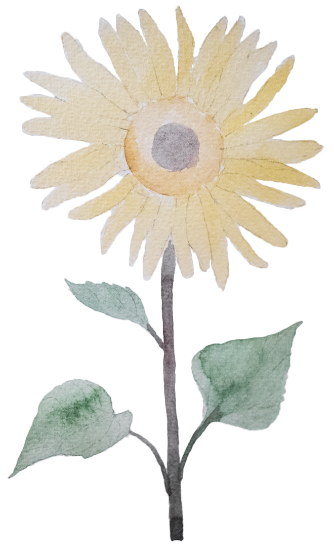 Sunflower Lecithin earth grown ingredients Smart Drugs