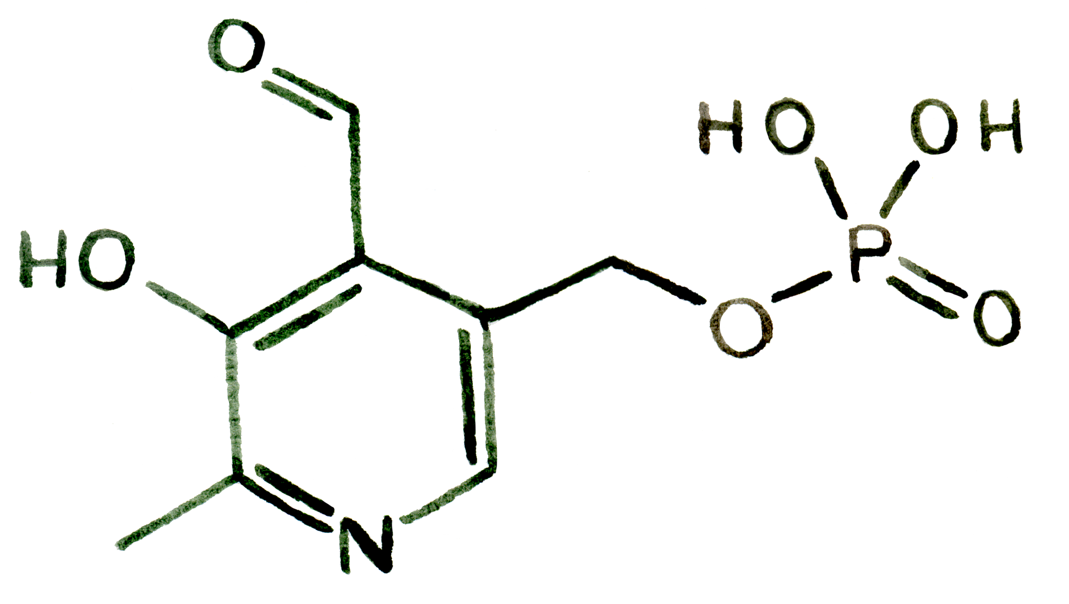 Structure-6-Vitamine B6.png