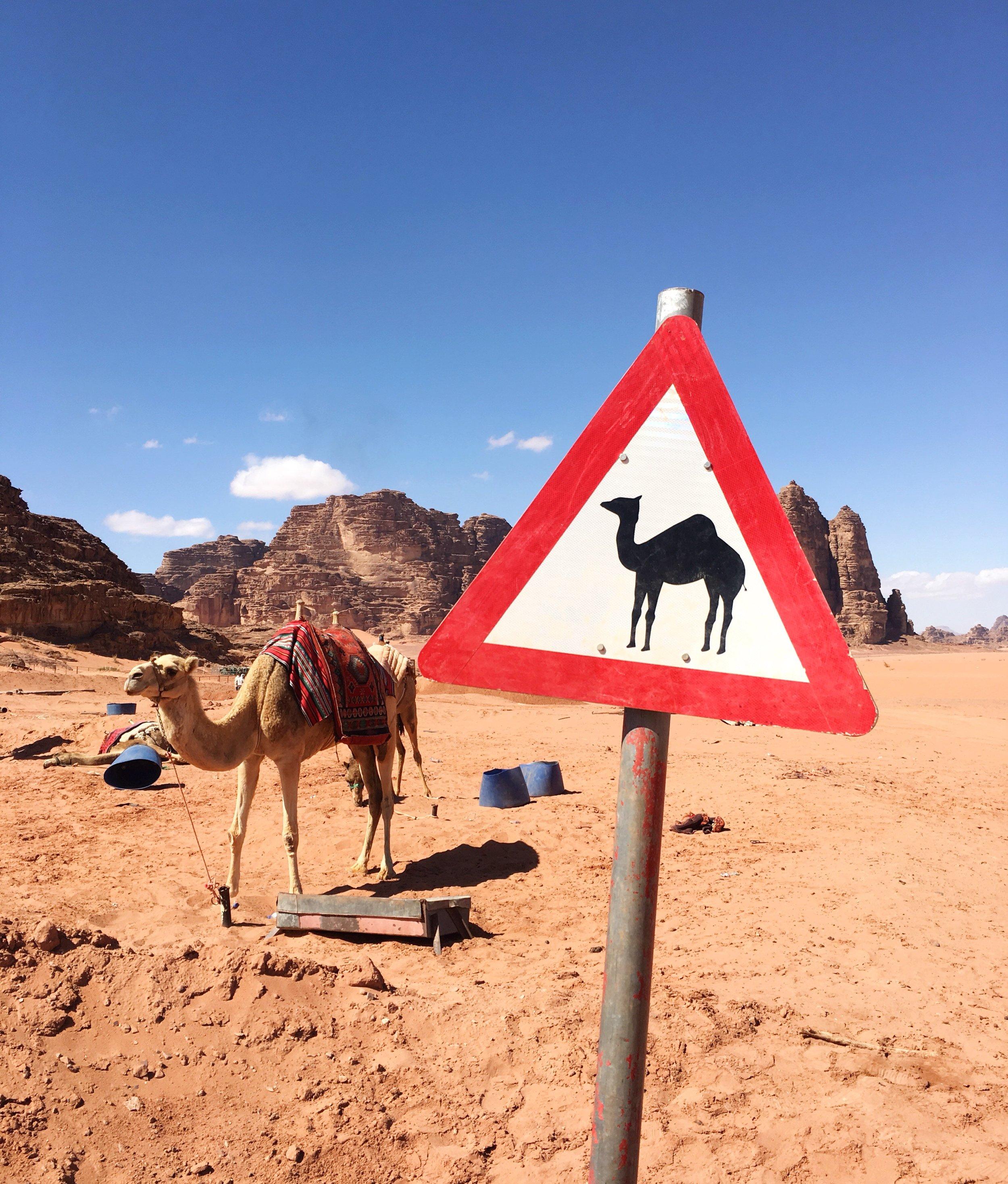 Wadi Rum 1.JPG