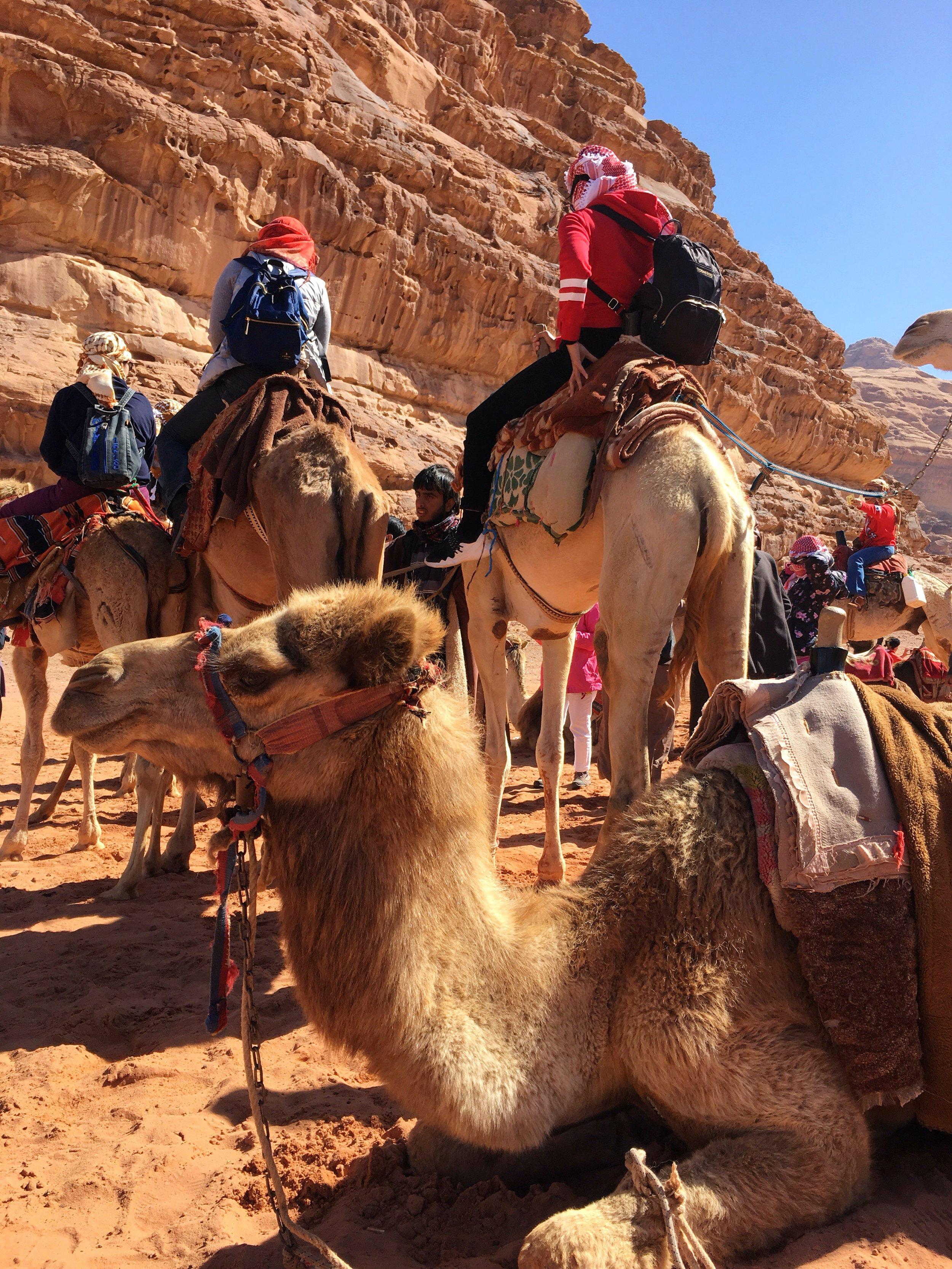 Wadi Rum 8.JPG