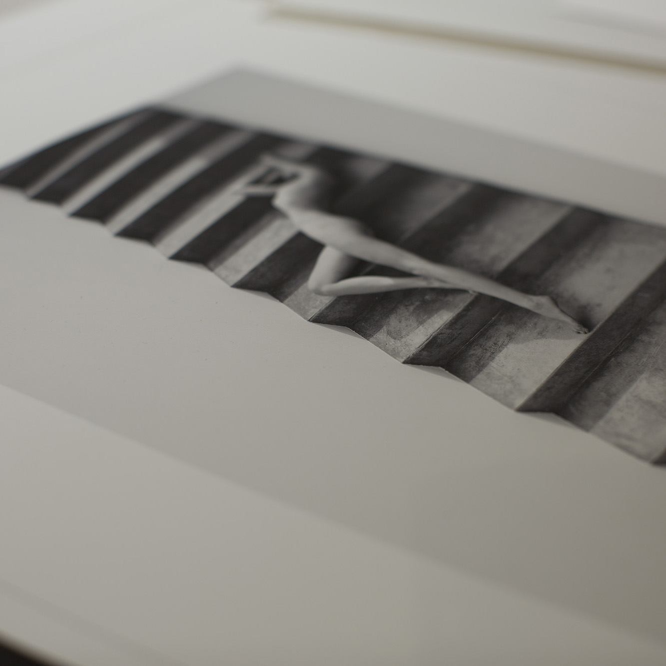 Archival Prints - Shop