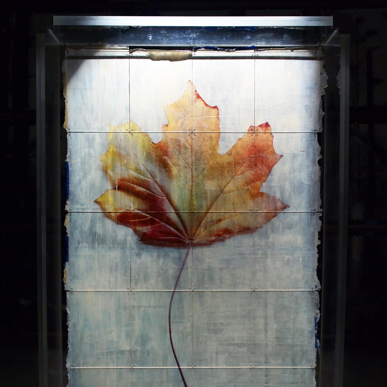 art basel - 5 leaves left